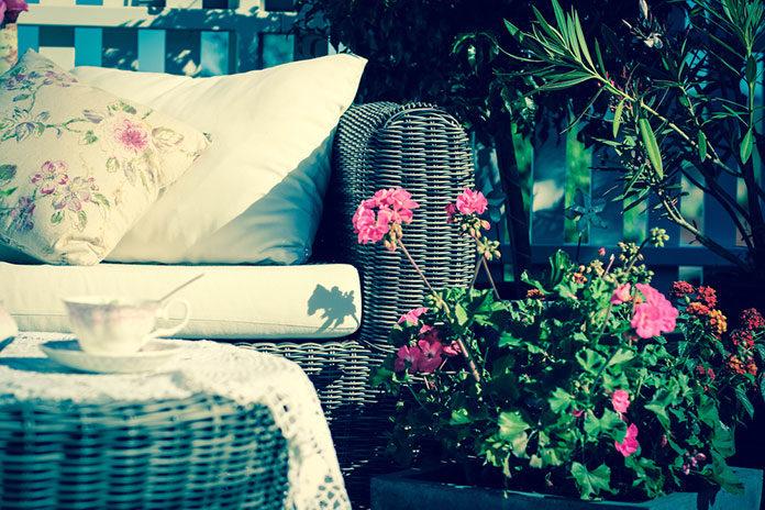 Jak uprawiać pelargonie na balkonie?